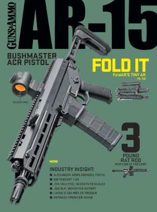 AR-15 ISSUE 3 2020