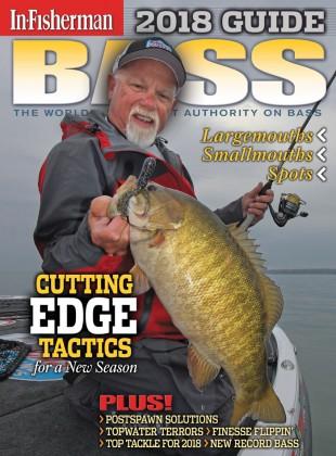 Bass Guide